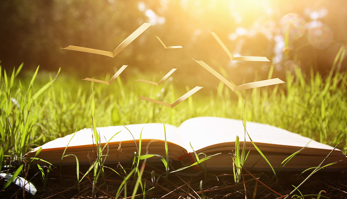 Besprechen von Krankheiten - Buch im Gras mit aufsteigenden Schnipseln